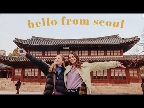 24 Hours In Seoul, South Korea!