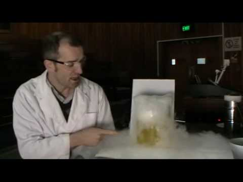 10.5 The Reaction of Sodium Hydroxide and Carbon Dioxide