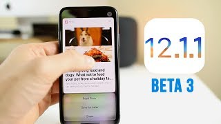 iOS 12.1.1 Beta 3 Released - What