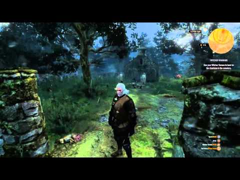 Weeping Angels in The Witcher 3: Wild Hunt [EASTER EGG]