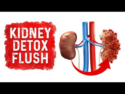 how-to-detox-and-flush-your-kidneys