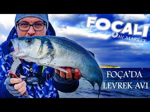 Foça'da At Çek Levrek Avı Bol ispendek ve Sürpriz İstavrit Spinning for Seabass シーバス 釣り