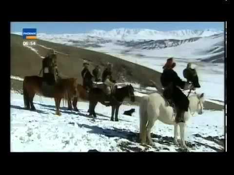 Đại bàng săn cáo và chó sói - Terrazzo