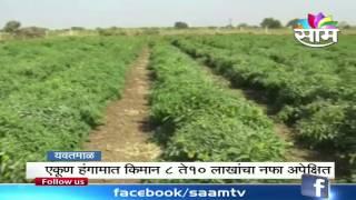 Vinod Kalaskars success story of Chilly farming