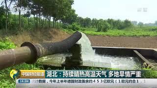 [中国财经报道]湖北:持续晴热高温天气 多地旱情严重  CCTV财经
