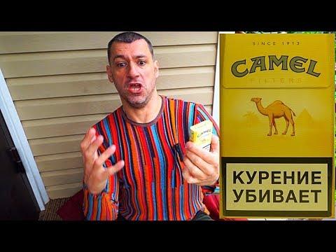 ОБЗОР СИГАРЕТ CAMEL ОТЗЫВЫ, ЦЕНА И ВКУС СИГАРЕТ КЭМЕЛ ЖЕЛТЫЙ