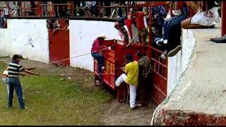torazo de Granja San Miguel del Sr. Miguel Mercado de Zapopan , Jal.