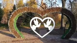 Свадебный кортеж в Ярославле
