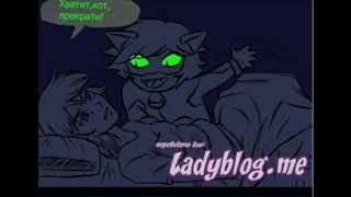 Коты видят в темноте //  леди баг и супер кот