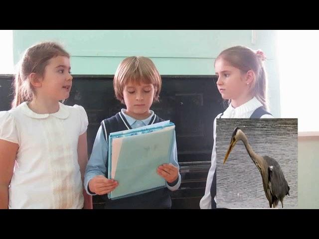 Изображение предпросмотра прочтения – АринаКуринова читает произведение «Сказка о желтой лягушке» И.С.Тургенева