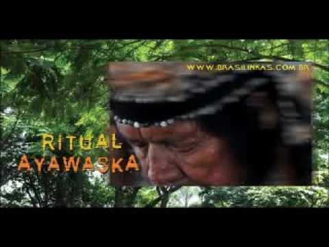 Native Amazon,Ayahuasca Shamanic music,Meditate and relax by Brasil Inkas