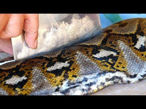 Индонезийская еда - гигантский питон змея карри Манадо Индонезия
