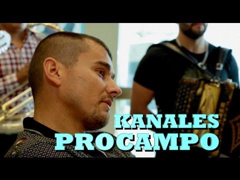 KANALES - PROCAMPO (Versión Pepe's Office)