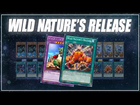Wild Nature's Release OTK + Maintenance Highlights [Yu-Gi-Oh! Duel Links]