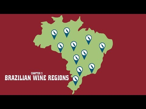 wine article A Taste Of Brazil  Brazilian Wine Regions