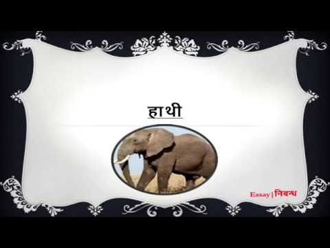 hindi essay on elephant for kids agrave curren sup agrave curren frac agrave curren yen agrave yen agrave curren ordf agrave curren deg agrave curren uml agrave curren iquest agrave curren not agrave curren agrave curren sect  hindi essay on elephant for kids agravecurrensup1agravecurrenfrac34agravecurrenyenagraveyen128 agravecurrenordfagravecurrendeg agravecurrenumlagravecurreniquestagravecurrennotagravecurren130agravecurrensect
