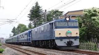 【JR東日本】EF60代走!ELぐんまよこかわ 通過