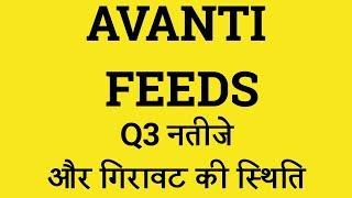 Avanti feeds Share News | Stock market Latest News | Sensex Today | Nifty |Lts