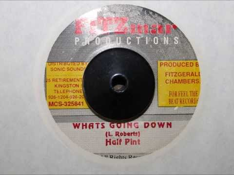 HALF PINT - WHATS GOING DOWN