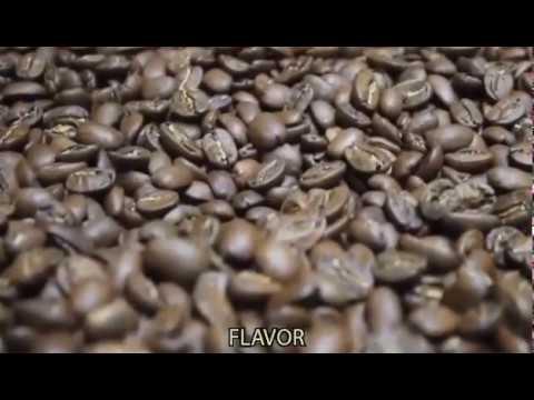 Documental proceso del Café de El Salvador