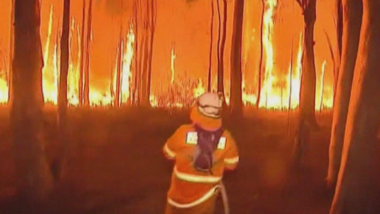 (AUSTRALIA 2013) Australia bushfires: Firefighters face 30m high flames in Lake Macquarie