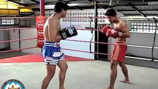 Основная техника тайского бокса(Боец муай тай показывает технику ударов руками, ногами, локтями и коленями по воздуху. Удары снимаются с..., 2015-12-26T05:06:32.000Z)