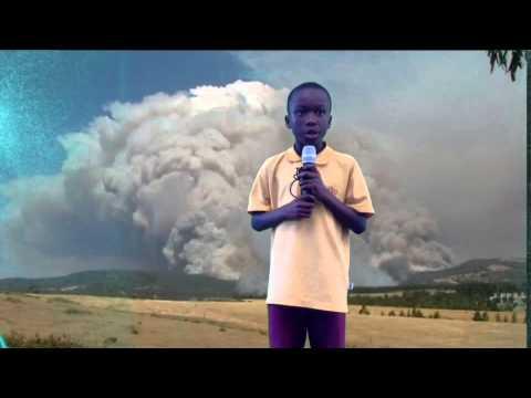 Natural Disaster News Report