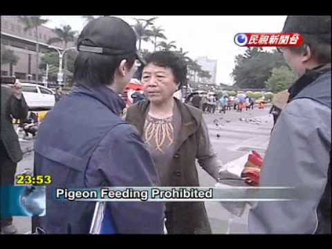 Taipei City steps up ban on pigeon feeding due to H7N9