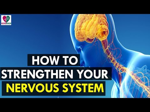 Leg Workouts – Necessary to Brain and Central Nervous System Health