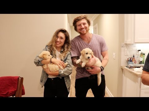 Thumbnail: SURPRISING GIRLFRIEND WITH PUPPIES!!