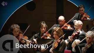 Beethoven: Symphony no.5 - Heinrich Schiff conductor [HD]