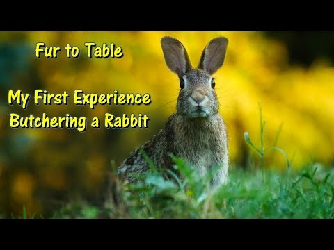 My First Time Preparing & Eating Rabbit by @GettinJunkDone