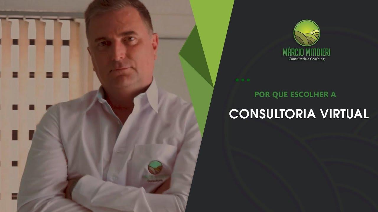 Por Que Escolher A Consultoria Virtual