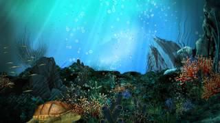 видео Фотообои подводный мир