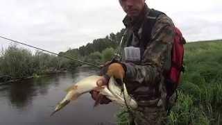 Рибалка в Омській області. Річка Оша.