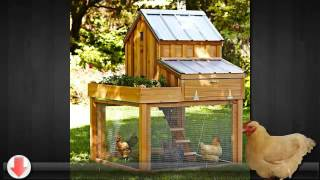 How To Build A Chicken Coop - Facts You Should Know