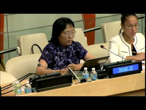 Chuang Liu, Chinese Academy of Sciences & CODATA - UN WSIS+10 consultation