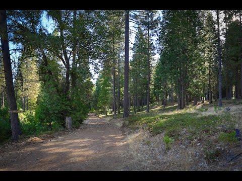 Timber Property Andreason Homestead Ranch | El Dorado County, California