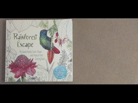 Rainforest Escape: My Island Animal, Exotic Flower and