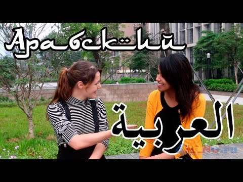 Арабский язык. Видеоурок для начинающх с носителем