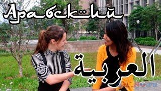 Арабский язык. Видеоурок для начинающх с носителем(Арабский язык. Видеоурок с носителем для начинающх Ссылка на это видео: https://youtu.be/G_4aKxCvI1I Ссылка на канал:..., 2015-05-28T10:46:10.000Z)
