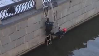 Спасение собаки на Котельнической набережной в Москве