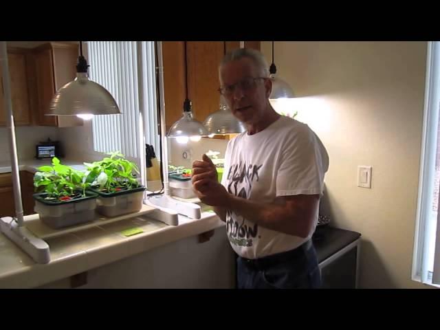 Fluorescent grow lights – Plantozoid com