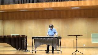 Antek Olesik Wibrafon Prelude and Blues Ney Rosauro Drum Fest Opole