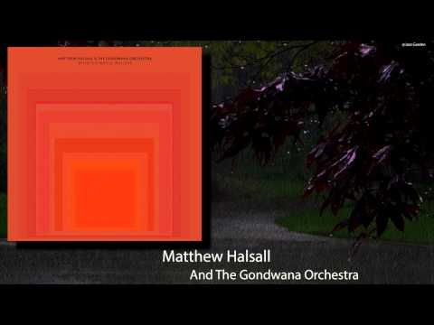 Matthew Halsall & The Gondwana Orchestra - A Far Away Place.mp4
