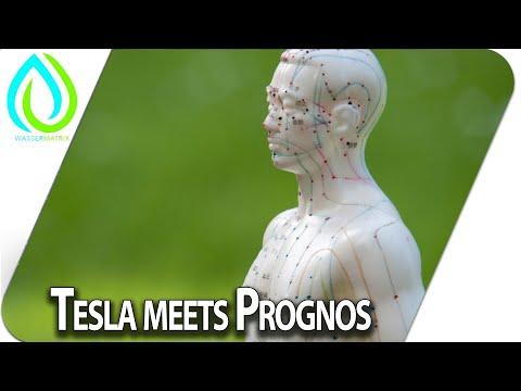 Tesla meets Prognos - im Gespräch mit Marko Tuntsch und Arthur Tränkle