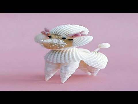 creative-ways-to-decorate-with-shells