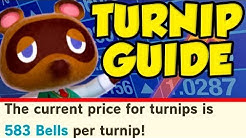 ULTIMATE Animal Crossing New Horizons Turnip Guide! Animal Crossing New Horizons Turnip Tips!