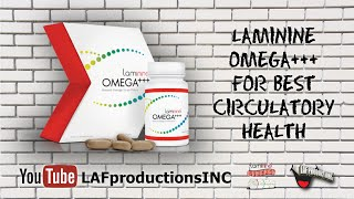 Laminine OMEGA+++ for Best Circulatory Health Thumbnail