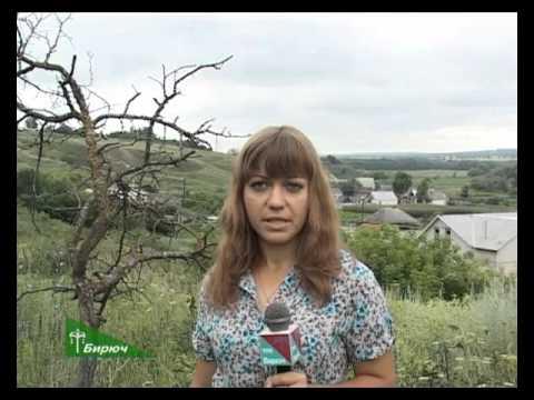 История села Ямки Красногвардейского района. 20.10.2015